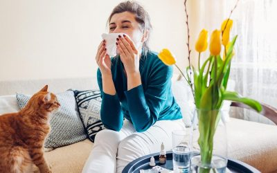 Allergy Season and Air Ducts